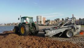 La retirada de algas comienza este próximo miércoles. Foto: lalínea.es