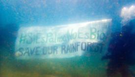 La pancarta desplegada por los ecologistas en el fondo marino. Foto: Verdemar