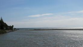 La desembocadura del río Guadiaro