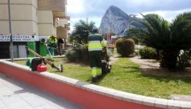 Operarios municipales de la parques y jardines. Foto: lalínea.es