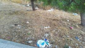 Los márgenes de la carretera se han convertido en un vertedero, denuncian los ecologistas