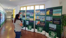 Paneles informativos de No en mi depósito, la exposición de Verdemar