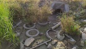 Imagen de los neumáticos proporcionada por los ecologistas de Verdemar