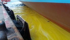 Verdemar ha difundido esta imagen sobre el vertido en aguas de la Bahía
