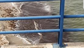Imagen del vertido de gasoil difundida por Verdemar