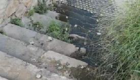 AxSí Algeciras denuncia vertidos fecales en la calle Espíritu Santo