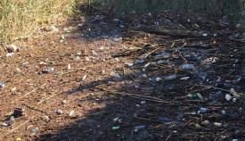 Una imagen difundida por Verdemar de uno de los arroyos