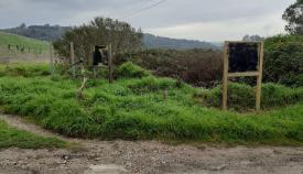Un acto vandálico daña la señalización de la Puerta Verde en Algeciras