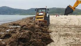 Retiradas más de 20 toneladas de algas en la playa de Getares