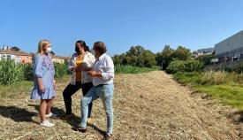 La Junta lleva a cabo labores de limpieza en el Arroyo Cachón