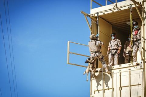 Un equipo cinológico se dispone a realizar un fast-rope durante el primer día de los ejercicios CANEX. Foto TEAR