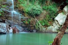 Casca de Los Alcornocales