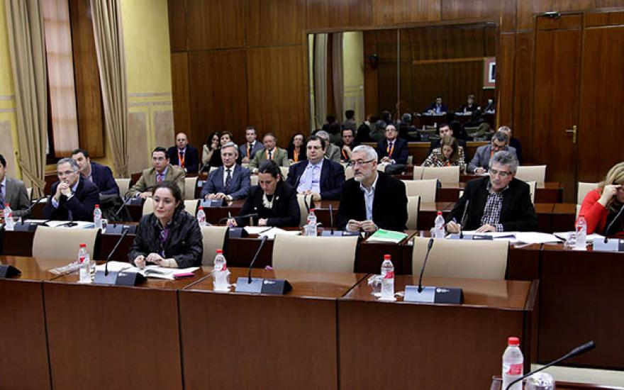 Inmaculada Nieto en una Comisión del Parlamento de Andalucía